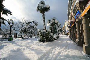 Зимние каникулы в Ялте