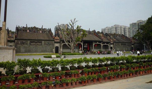 Академия Chen Clan