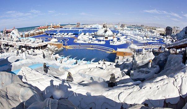 Аквапарк «Исландия»