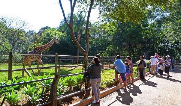 Американский зоопарк