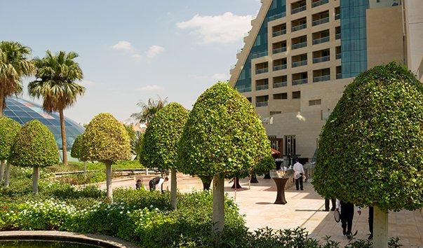 Ботанические сады Raffles