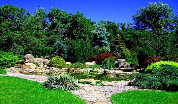 Ботанический сад в харькове фото