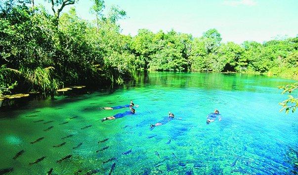 Экологический район Риу-да-Прата