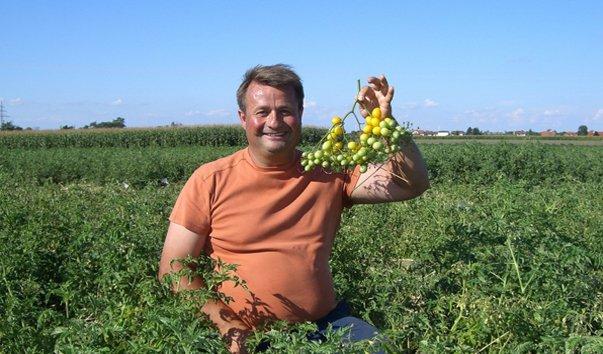 Ферма Эрика Штековича