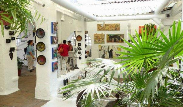 Галерея цветов в Пуэрто-Вальярте