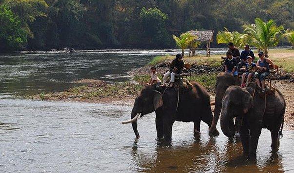 Лагерь для слонов Taweechai
