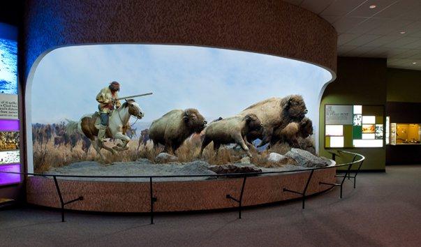 Музей человека и природы