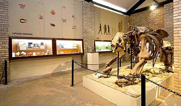 Музей естественной истории UFMG