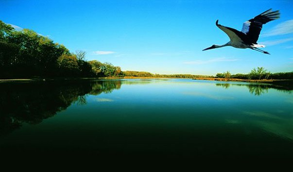 Национальный парк Дунай-Ауэн