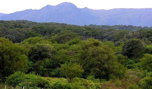 Национальный парк Каа-Ия-дель-Гран-Чако