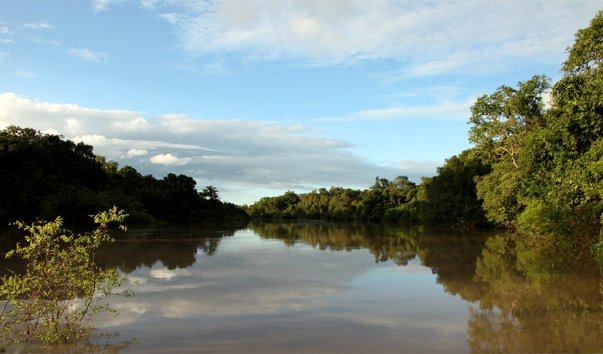 Национальный парк Kainji