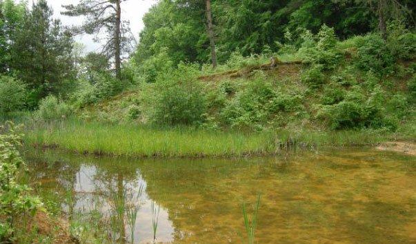 Озера Бохнерзгруб