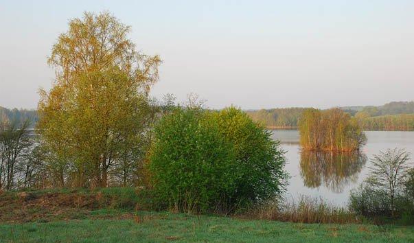 Озеро Алё Бежаницкого района