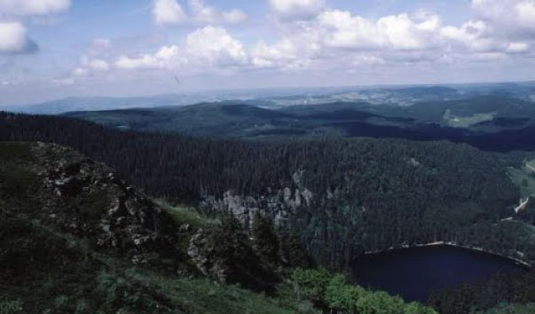 Озеро Фельд