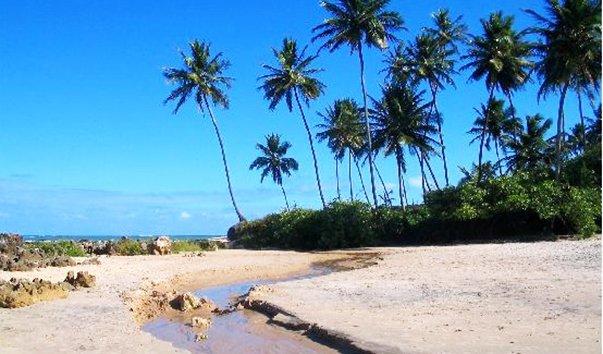 Пляж Coqueirinho