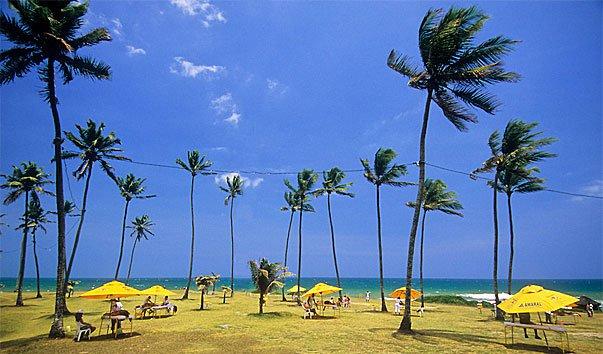Пляж Jardim de Ala