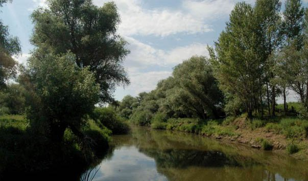 Природный парк Республики Калмыкия