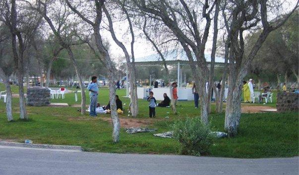 Развлекательный парк Saqr