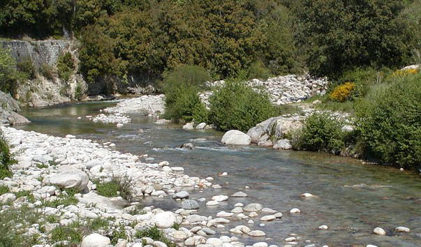 Река Гравона