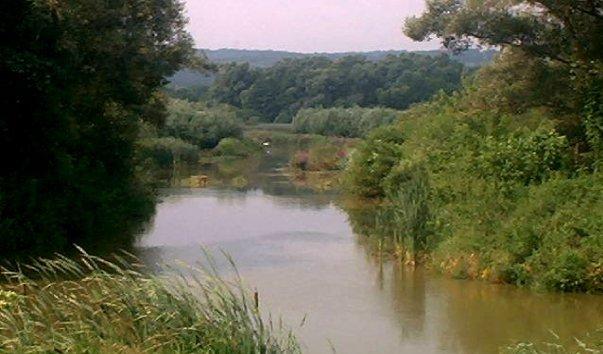 Река Зала