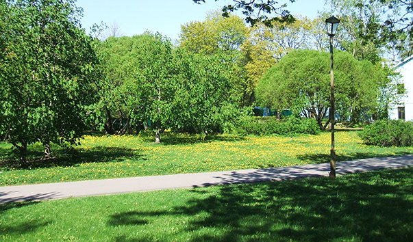 Сестрорецкий Сад