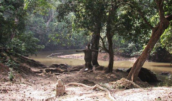 Священная роща Осун-Осогбо