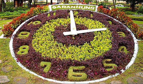 Цветочные часы