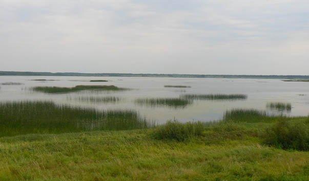 Усвятское озеро