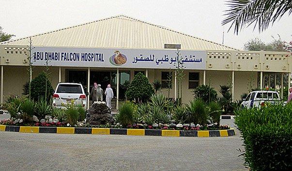 Ветеринарная клиника-центр для соколов в Абу-Даби