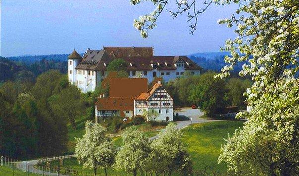 Замок Hohenfels
