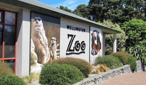 Зоопарк города Веллингтона